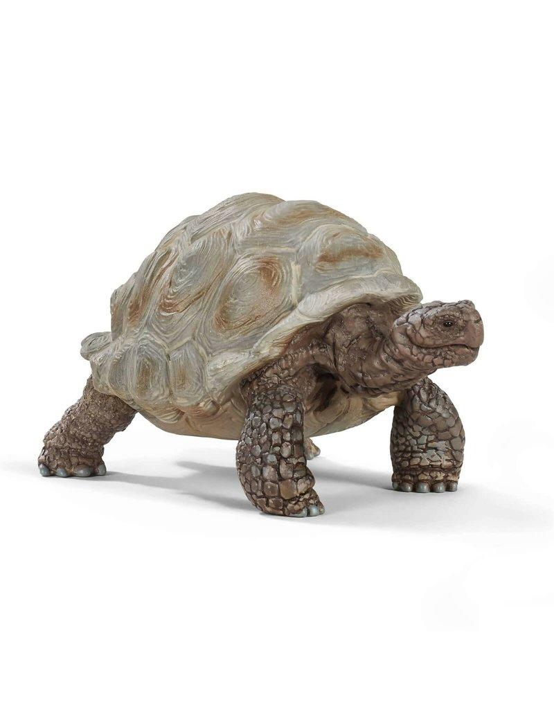 Schleich Schleich Giant Tortoise