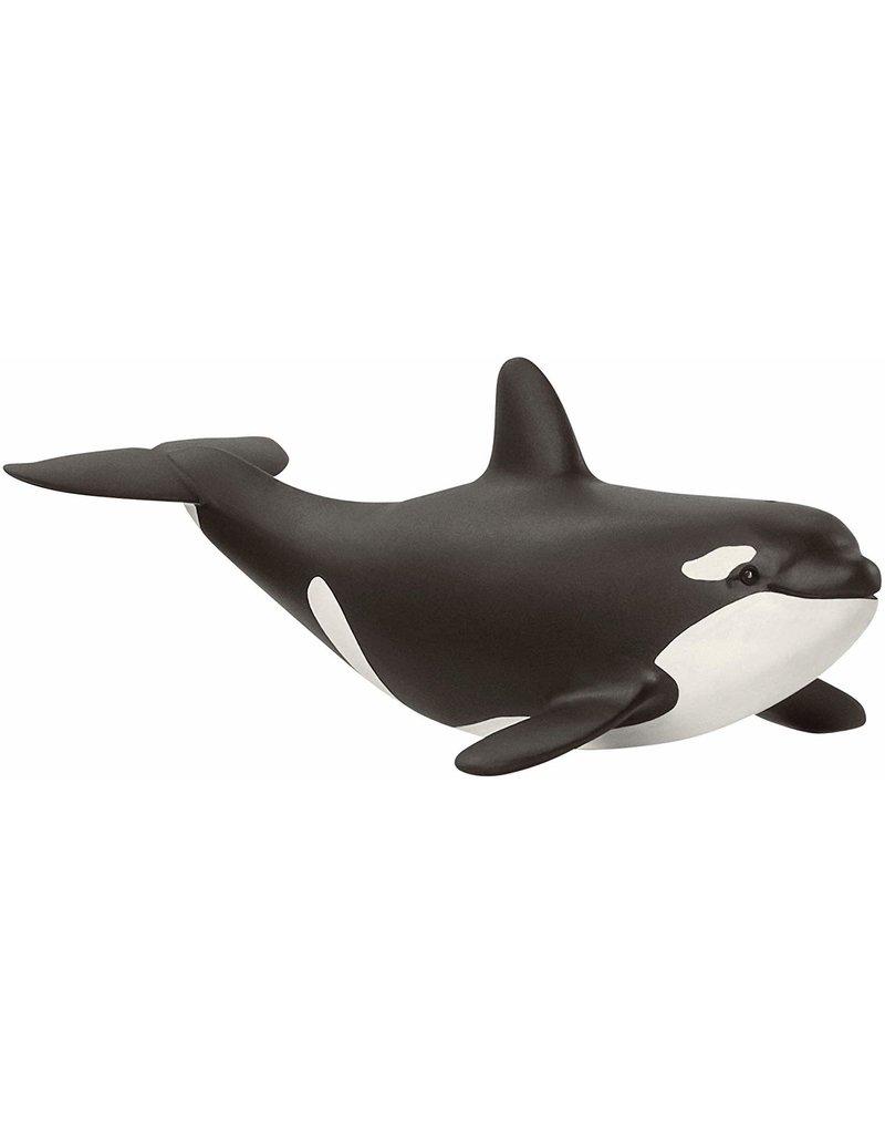 Schleich Schleich Baby Orca