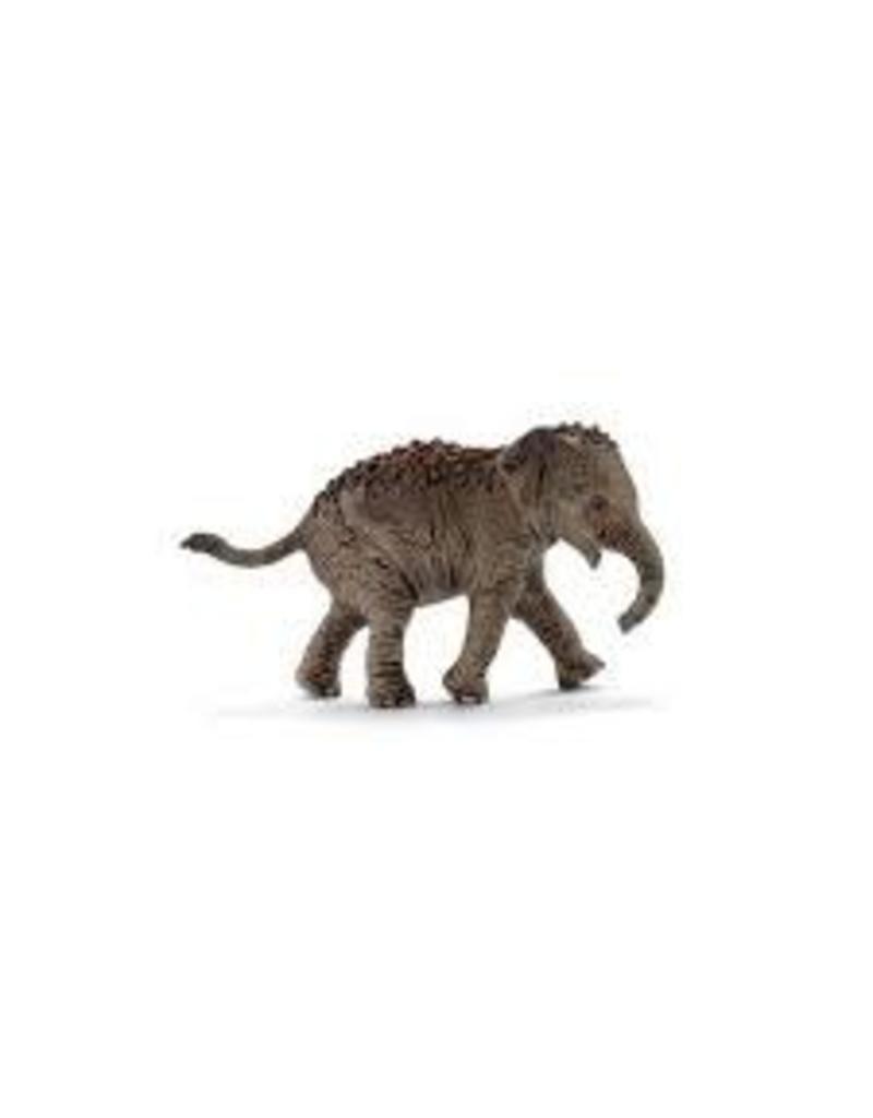 Schleich Schleich Asian Elephant Calf
