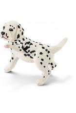 Schleich Schleich Dalmatian Puppy