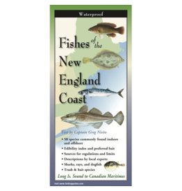 Steven M Lewers and Associates Waterproof Guide - Fishes of the New England Coast