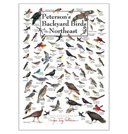 Steven M Lewers and Associates Poster - Peterson's Backyard Birds of the Northeast