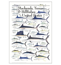 Earth Sea Sky Poster - Mackerels, Tunas & Billfishes of the United States
