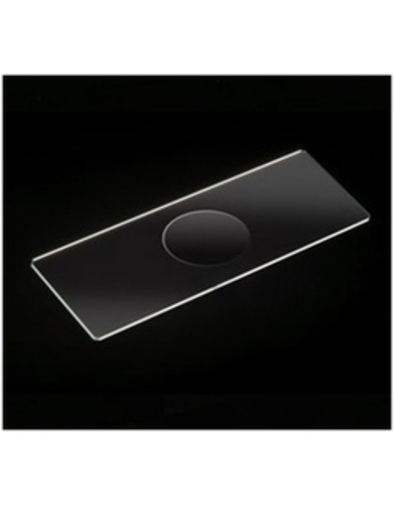 American Educational Products Microscope Glass Slides (Single Cavity) (Set of 12)