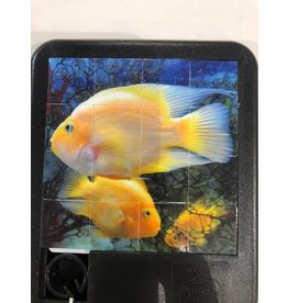Family Games America Sliding Tile Puzzle - Deep Blue Sea - Parrotfish