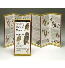 Steven M Lewers and Associates Waterproof Guide - Owls of North America