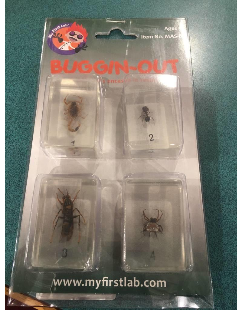 C & A Scientific Buggin-Out Insects in Resin Scorpion