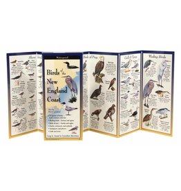 Steven M Lewers and Associates Waterproof Guide - Birds of the New England Coast Folding Guide