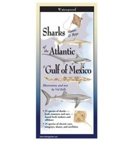 Steven M Lewers and Associates Waterproof Guide - Sharks Skates & Rays of the Atlantic & Gulf of Mexico