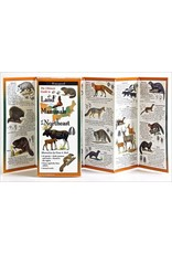 Steven M Lewers and Associates Waterproof Guide - Land Mammals of the Northeast