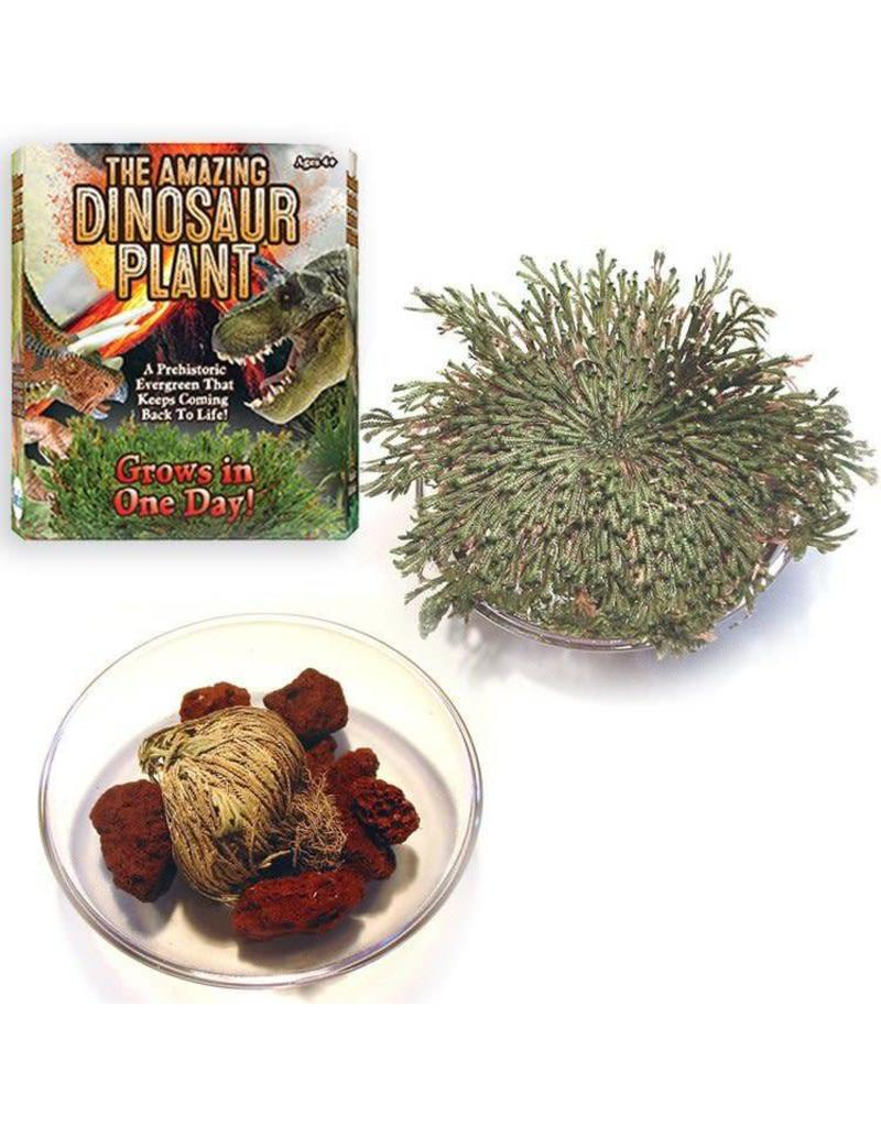 Dunecraft The Amazing Dinosaur Plant