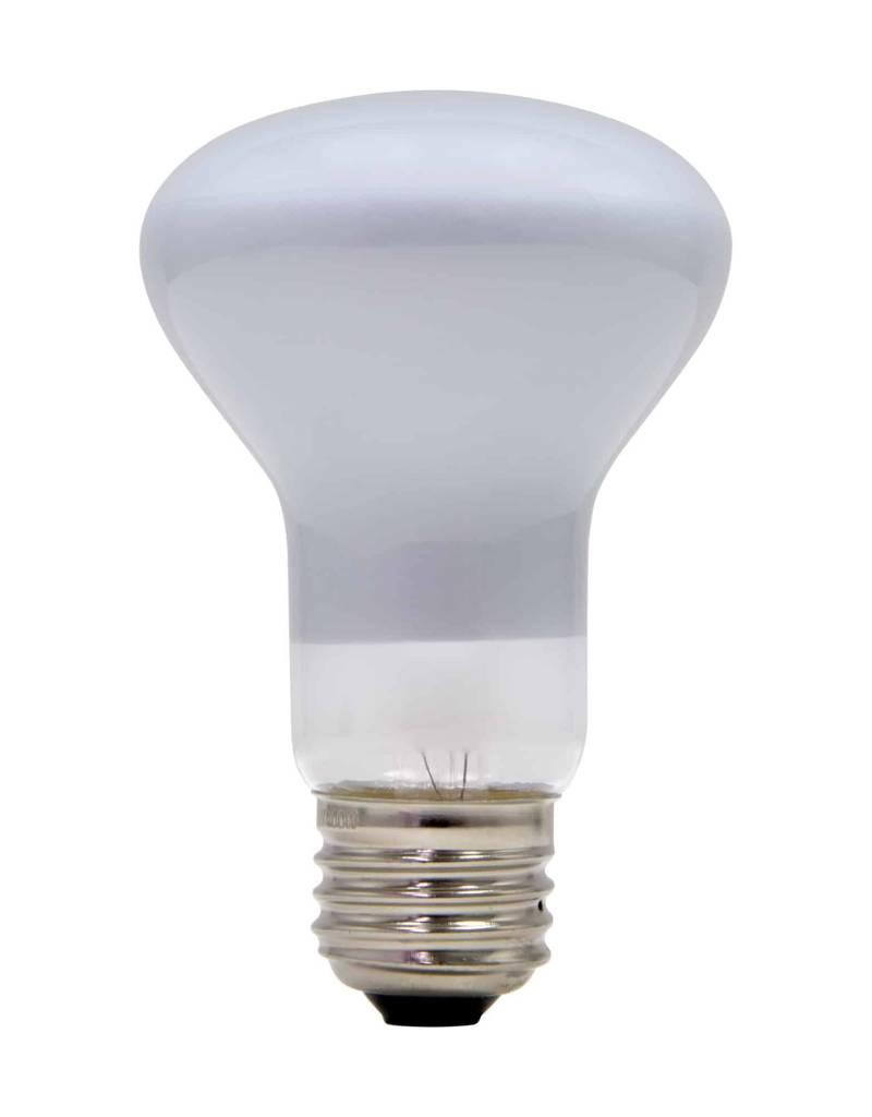 Schylling Toys 100 Watt Light Bulb