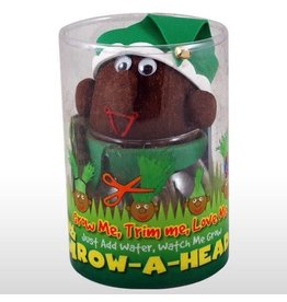 Sourcing International Grow-A-Head Holiday - Elf (May Vary)