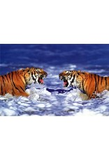 Safari Ltd. Bengal Tigers Roaring Poster