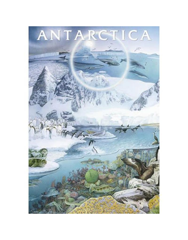 Safari Ltd. Antarctica