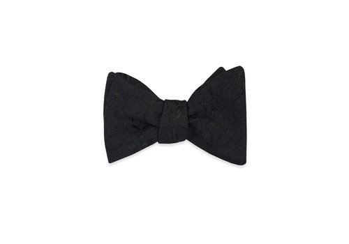 Pocket Square Clothing The Jayden Bow Tie