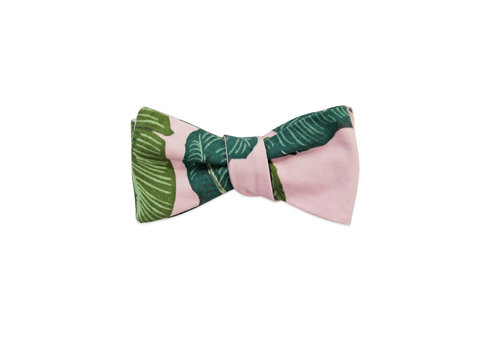 Pocket Square Clothing The Bev Bow Tie