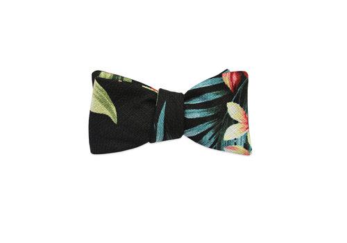 Pocket Square Clothing The Kalea Bow Tie