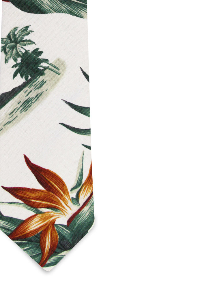The Hani Birds of Paradise Tropical Print Tie
