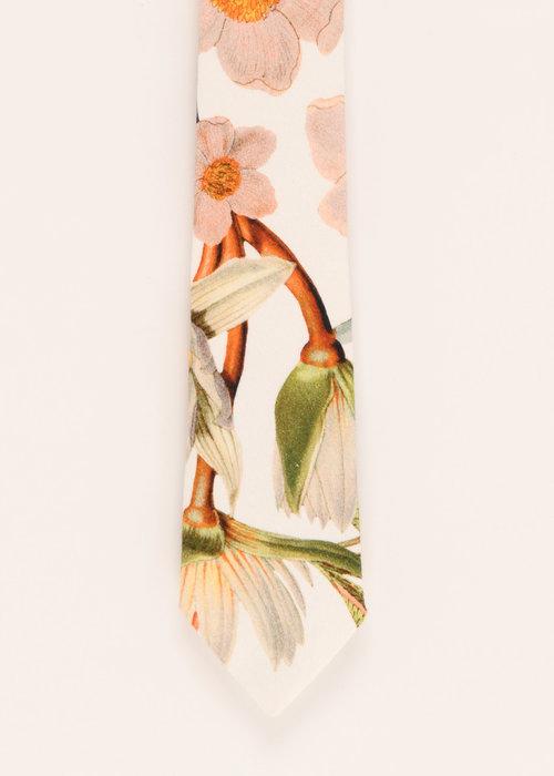 Pocket Square Clothing The Livia Tie