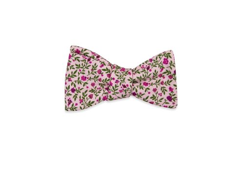Pocket Square Clothing The Angelika Bow Tie