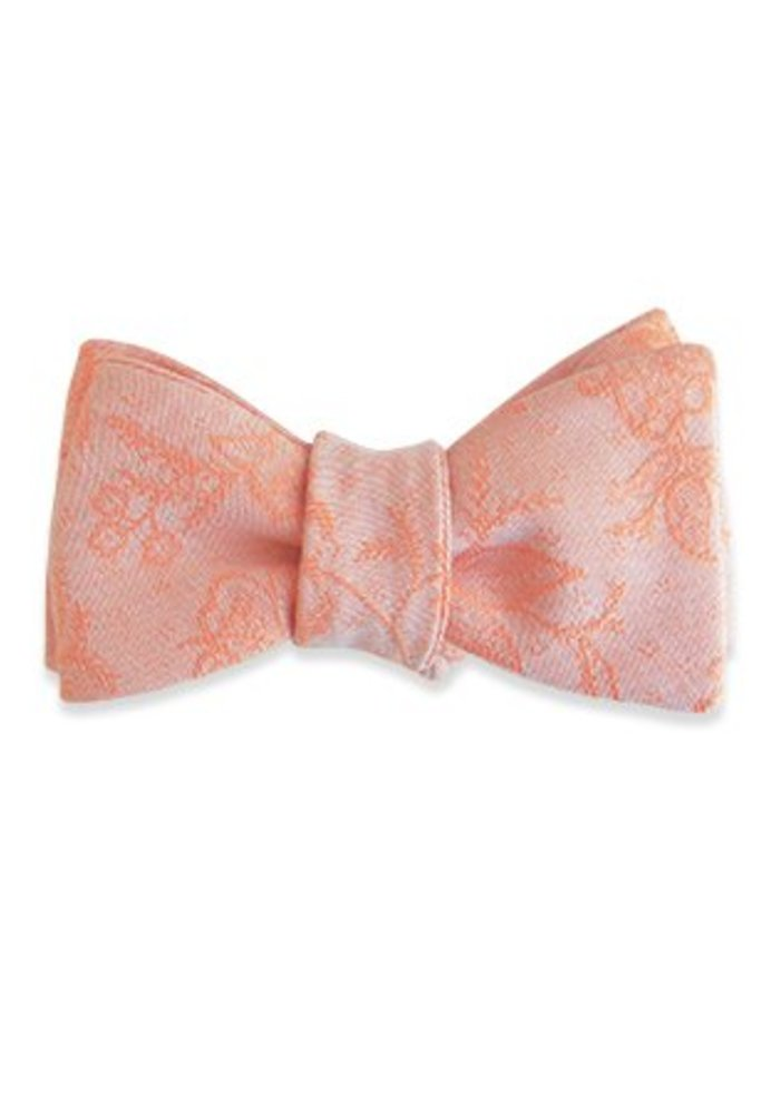 The Parvati Bow Tie