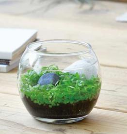Desktop Water Garden