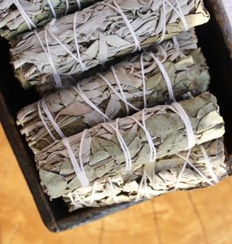 White Sage & Eucalyptus Bundle
