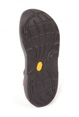 Fishpond Chaco Native Z2