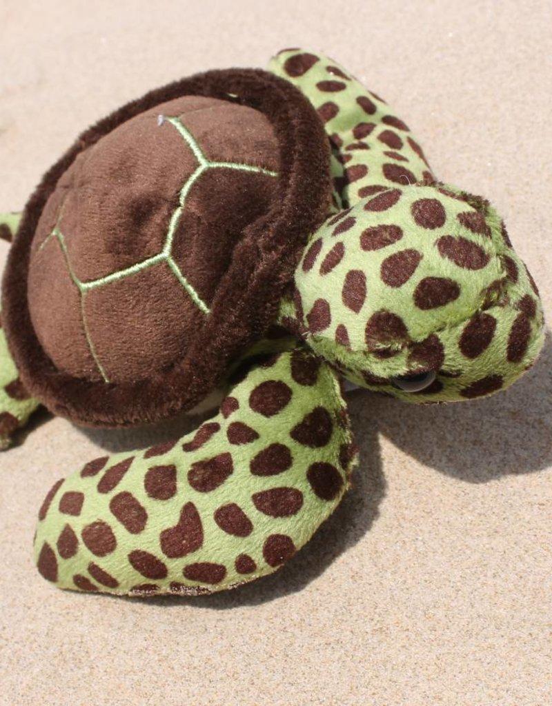 Lil Green Sea Turtle