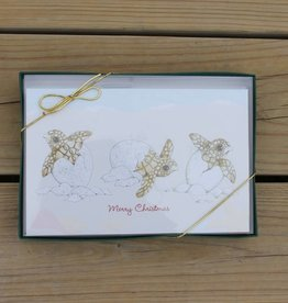 Turtle Tidings Holiday Cards