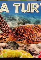 Sea Turtle Flip Book