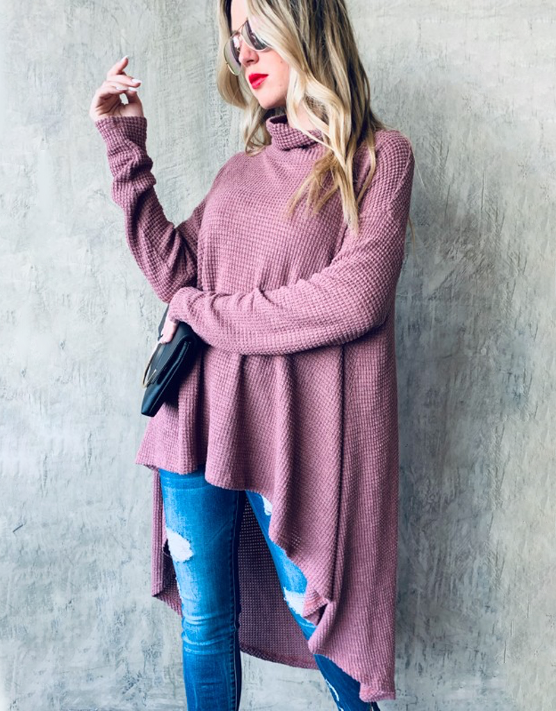 Turtle Neck Knit Tunic Top