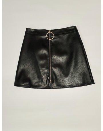 Take a Chance Mini Skirt