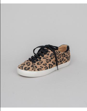 Low Top Leopard & Leather Sneaker