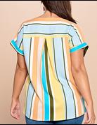 Multi-Color Vertical Striped Printed Top