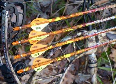Arrows / Bolts