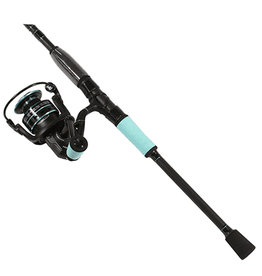 Penn Penn Pursuit Combo 2500 spin reel, HT 100 drag