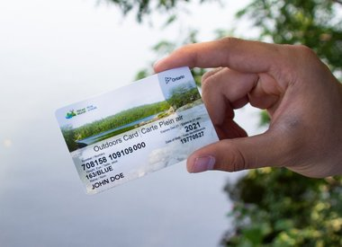Fishing & Hunting Licences