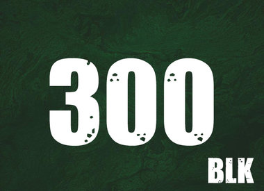 300 BLK