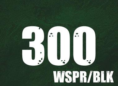 300 WSPR/BLK