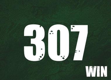 307 Win