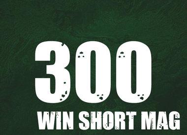 300 Win Short Mag
