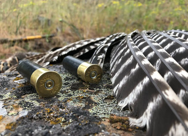 Turkey Ammo