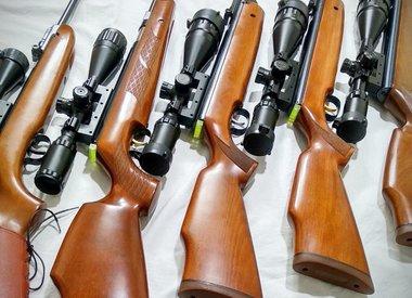 .22 Pellet Rifle