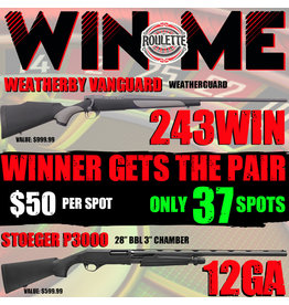 Draw #094- Roulette Pair! Weatherby Vanguard & Stoeger P3000