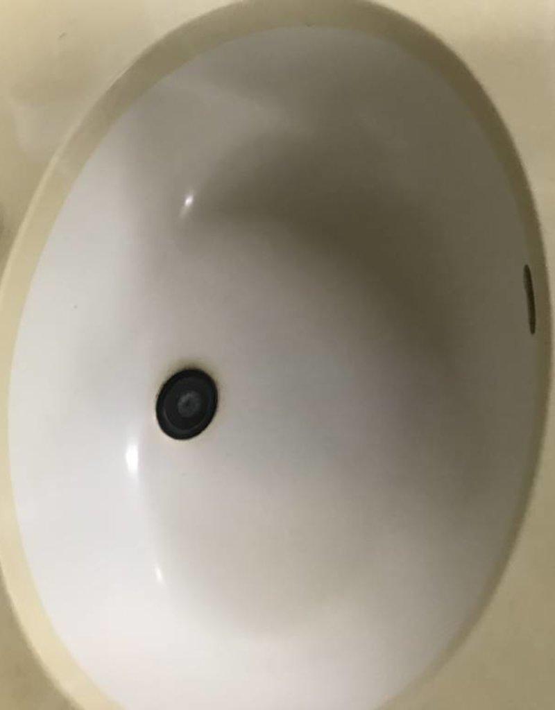 R&F Bathroom Sink w/ Corian Countertop