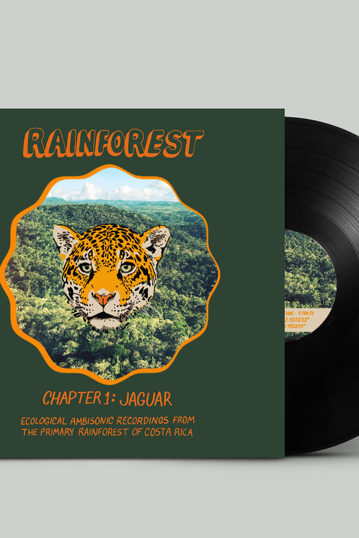 "Never Apart Vinyl Record ""EAR 001: Rainforest"""