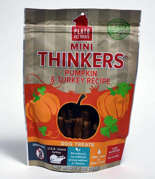 Plato Mini Thinkers Pumpkin & Turkey Recipe