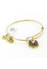 ALEX AND ANI A17EBFFRG FORTUNE'S FAVOR GOLD
